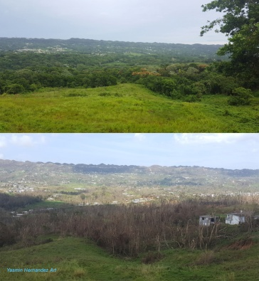 View of the valley pre and post Maria, taken from our terraza.